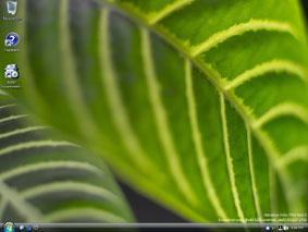 Windows Vista no puede reproducir todo tipo de archivos multimedia.